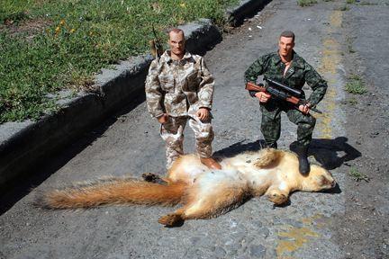One shot, one squirrel